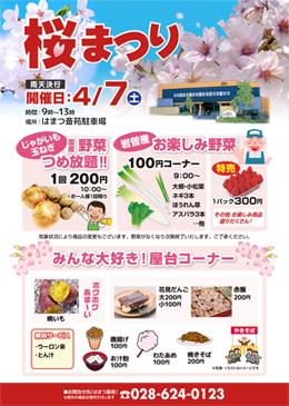 20170407_sakuramaturi_ura.jpg