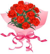 carnation06-001.jpg
